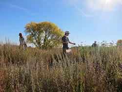 prairie-volunteers 2